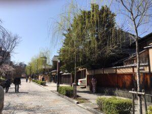 京都白川筋