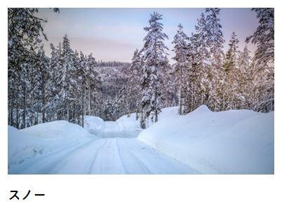 世界ラリー雪道