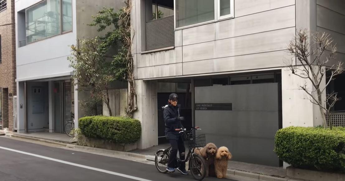 稲葉浩志目撃情報!愛犬散歩中